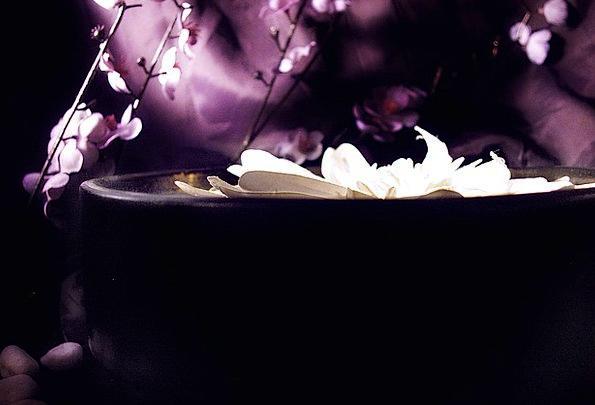 Lotus Zen Satin