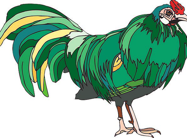 Chicken Cowardly Fowl Poultry Hen Free Vector Grap