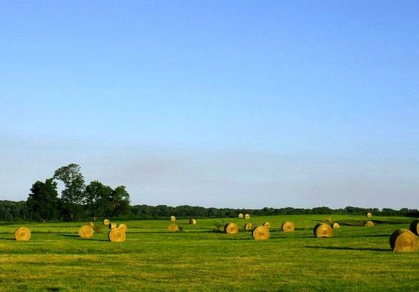 Hay Landscapes Bundles Nature Haystack Bales Grass