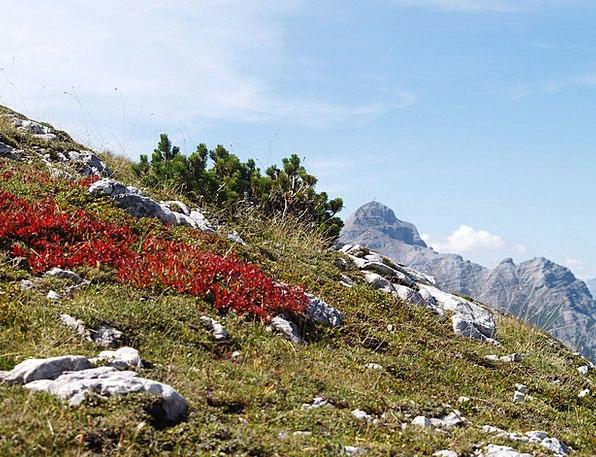 Alpine Mountainous Landscapes Warmonger Nature Mou