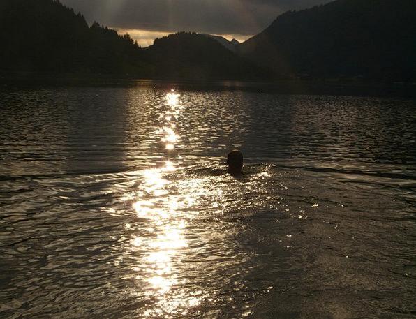 See Understand Dip Dark Dim Swim Back Light Tailli