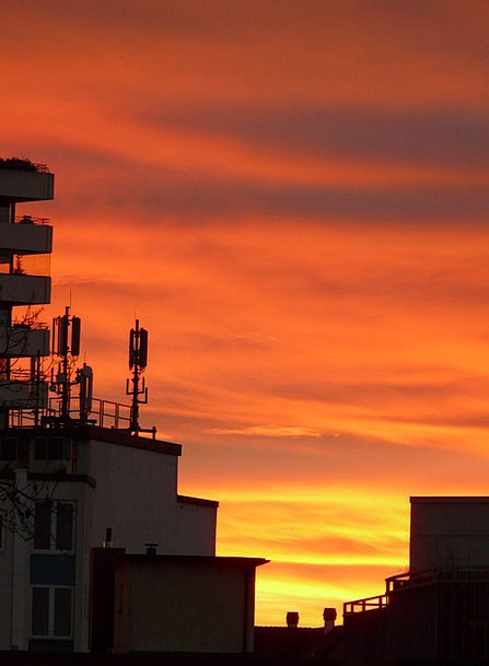 Antennas Feelers Vacation Spreader Travel Radio Sy