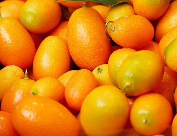 Kumquats Drink Ovaries Food Fruit Ovary Fruits Dar