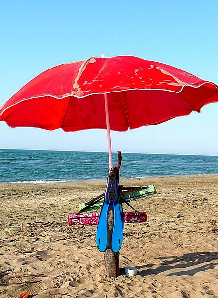 Parasols Sunshades Vacation Seashore Travel Beach
