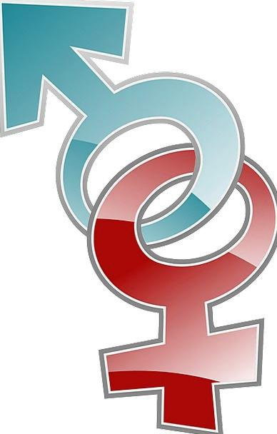 Female Feminine Masculine Symbols Ciphers Male Sex