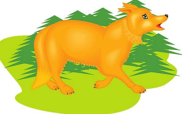 Orange Carroty Lawn Fox Deceive Grass Trees Plants