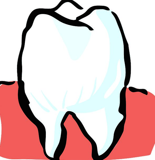 Tooth Projection Medical Entrance Health Dental Mo