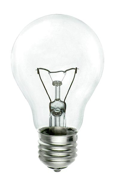 Bulb Corm Energy Vigor Electricity Transparent Gla