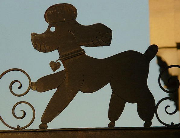 Poodle Metallic Iron Firm Metal Silhouette Outline