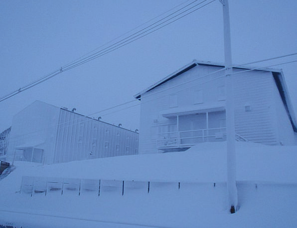 Snow Snowflake Ice Frost Antarctica Frozen White S