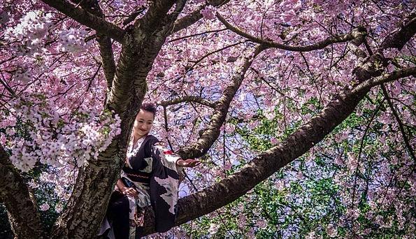 Japanese Girl Fashion Bathrobe Beauty Woman Lady K