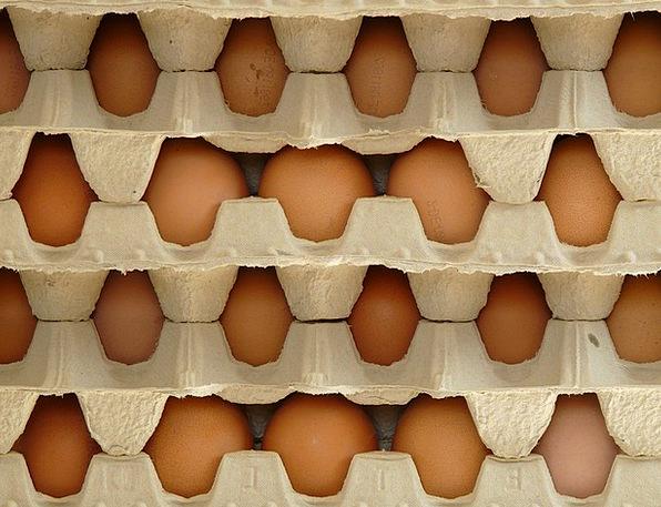Egg Ovum Drink Food Food Nourishment Egg Box