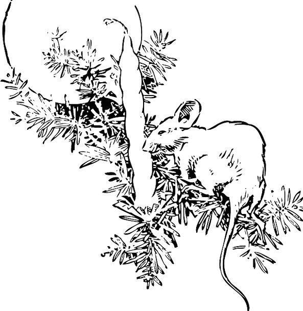 Mouse Taper Christmas Tree Candle Christmas Theme