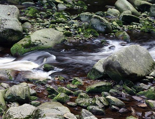 Stones Gravels Aquatic Bank Set Water