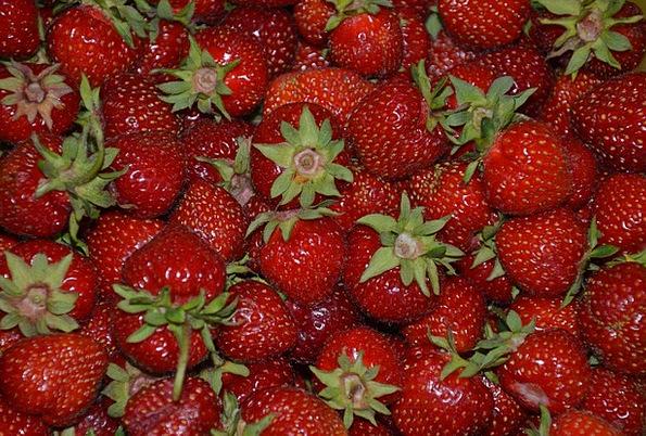 Strawberries Drink Ovary Food Sweet Sugary Fruit R