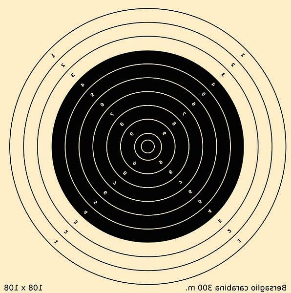 Rifle Ransack Board Aim Goal Target Place Home Tak