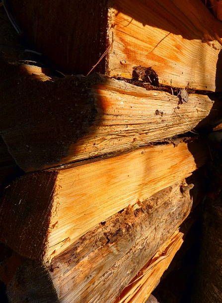 Wood Timber Kindling Log Record Firewood Burn Inju
