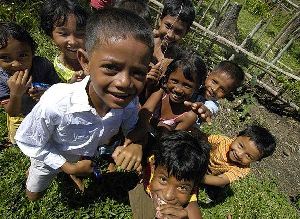 Sumatra Landscapes Nature Children Broods Indonesi