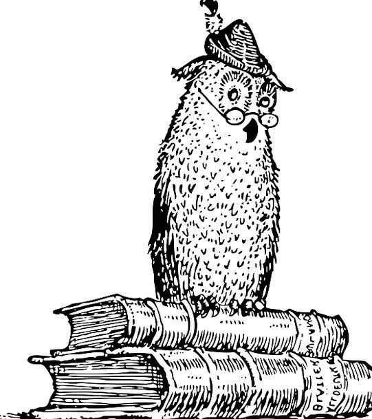 Owl Records Knowledge Information Books Studying W