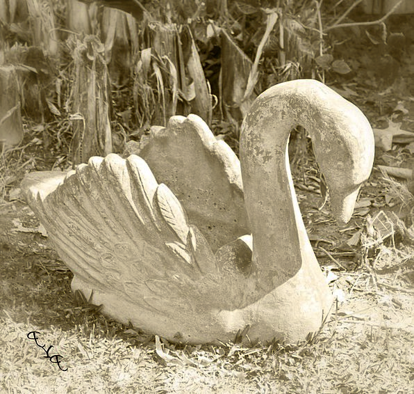 Swan Wander Stone Figure Sculpture Stone Pebble Ya