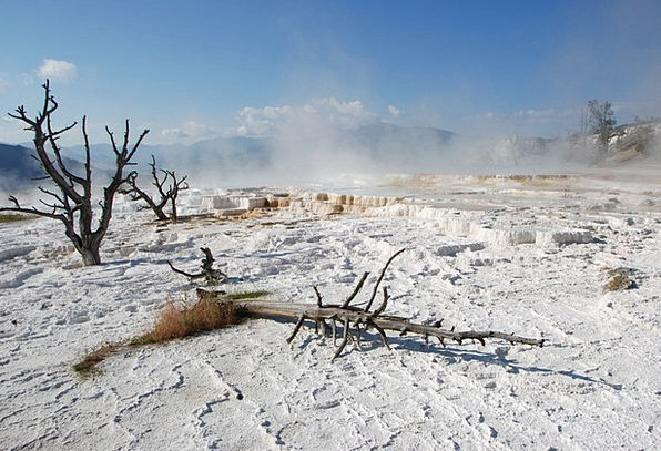 Water Aquatic Landscapes Nature Yellowstone Nation
