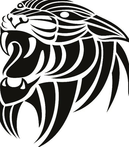 Tiger Dark White Snowy Black Angry Stripes Strips