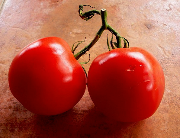 Tomatoes Drink Creeper Food Vegetable Plant Vine V