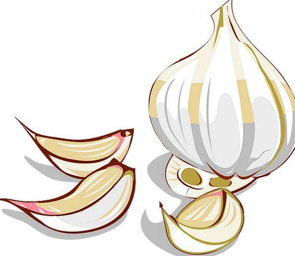 Garlic Drink Pieces Food Clove Piece Cloves Flavor