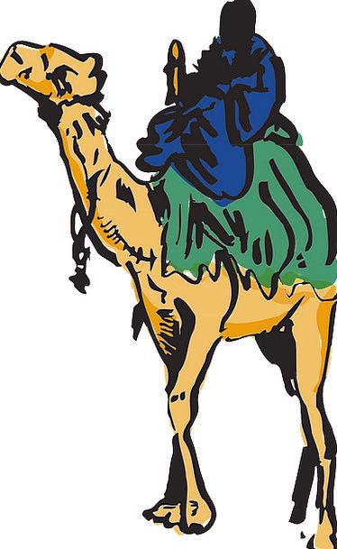 Camel Beige Gentleman Riding Equestrian Man Desert