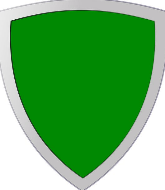 Shield Protection Insignia Symbol Badge Template L