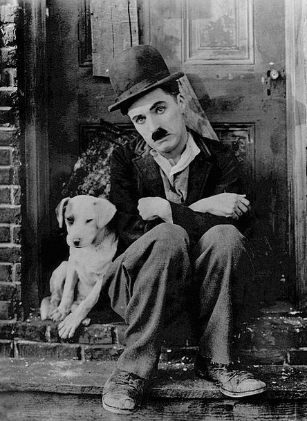 Charlie Chaplin Performer Bored Uninterested Actor