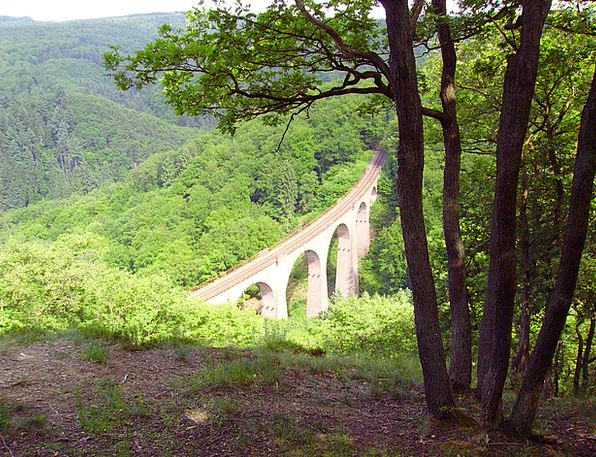 Forest Woodland Landscapes Clearing Nature Viaduct