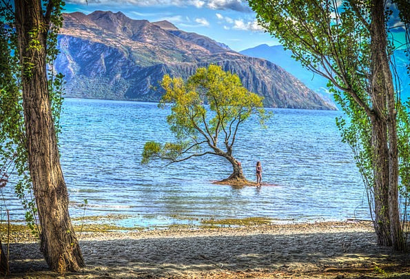 Wanaka Landscapes Nature Lake Wanaka New Zealand C