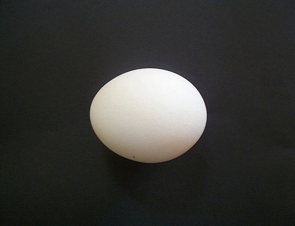 Egg Ovum Drink Remote Food Chicken Egg Isolated Wh
