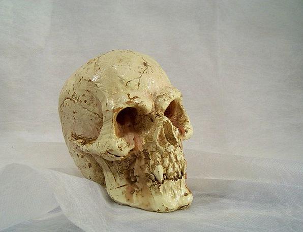Skull And Crossbones Candle Taper Decorative Items