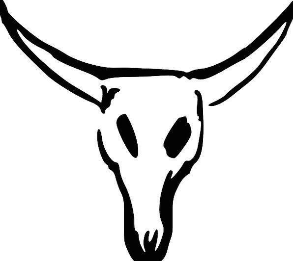 Skull Mind Intimidate Cattle Cows Cow Longhorn Bul
