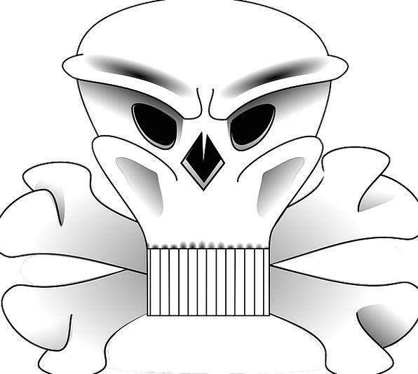 Crossbones Mind Danger Hazard Skull Symbol Sign De