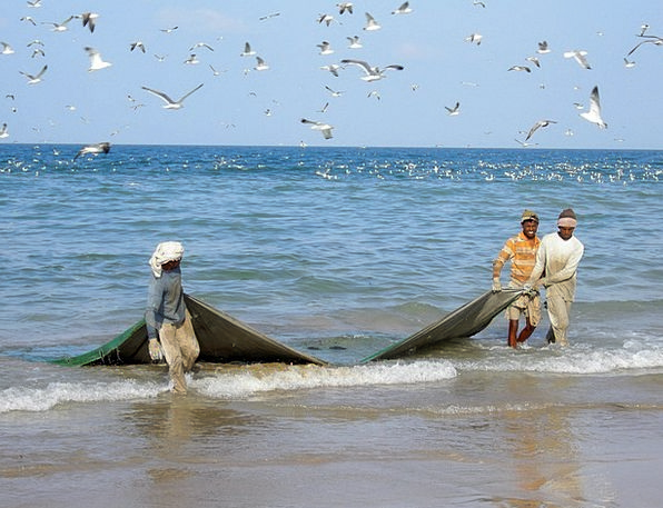 Fishermen Angling Sea Marine Fishing Persian Gulf