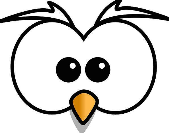 Owl Beep Head Skull Hoot Beak Bill Free Vector Gra