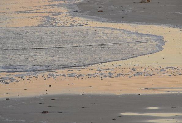 Beach Seashore Vacation Shingle Travel Sea Marine