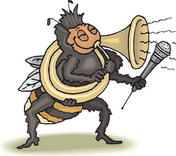 Happy Content Horn Siren Bee Playing Live Loud Tub