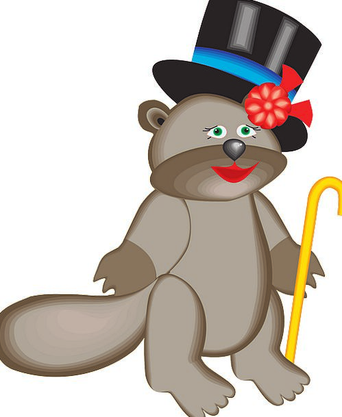 Top Highest Work Hat Cap Beaver Animal Physical Ca