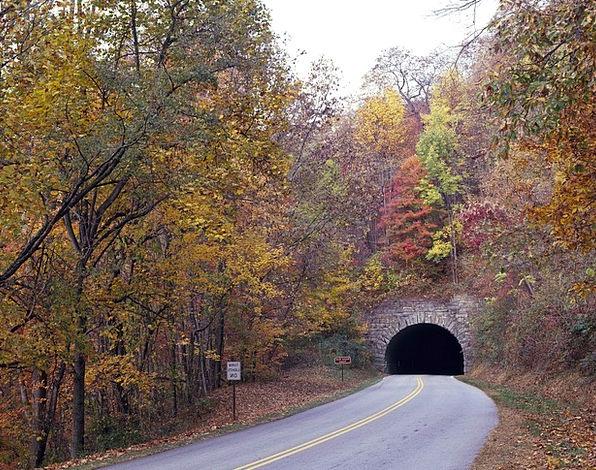 Tunnel Channel Traffic Greenery Transportation Fal
