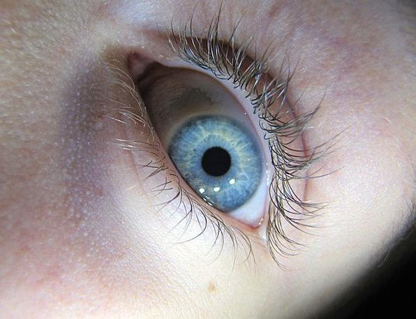 Eye Szupermakró Instruction Iris Macro Watch Timep