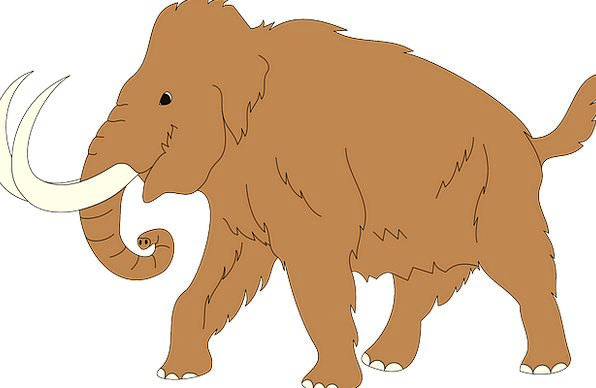 Animal Physical Antique Mammoth Enormous Ancient T
