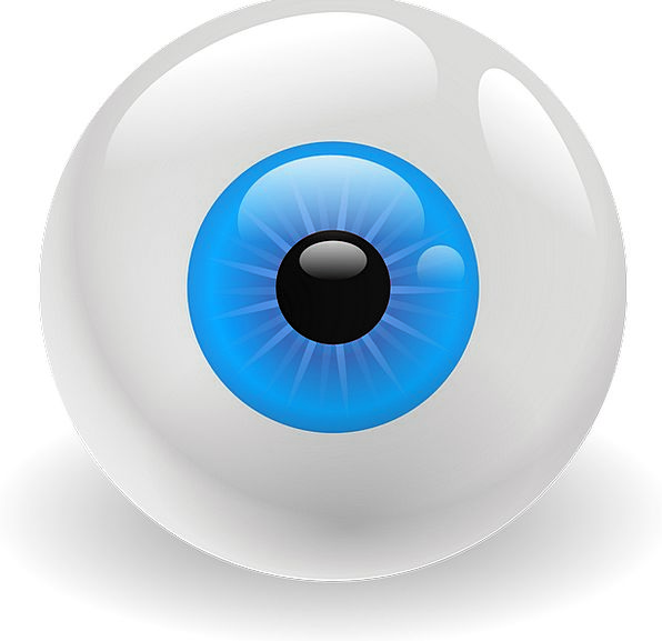 Eyeball Watch Structure Vision Dream Organ Retina