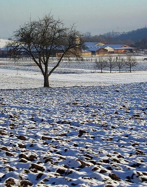 Winter Landscapes Farming Nature Farm Farmhouse Ag