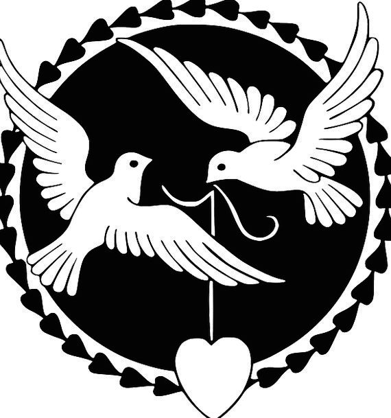 Pigeon Mark Darling Happiness Contentment Love Marriage