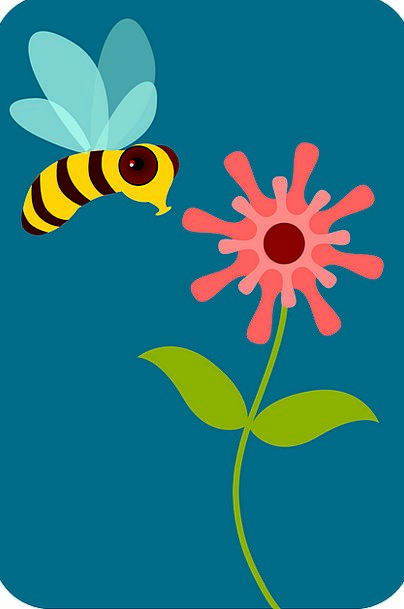 Bee Floret Insect Bug Flower Garden Animal Physica
