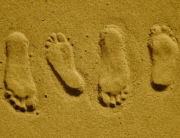 Footprints Paths Vacation Ladders Travel Sand Shin